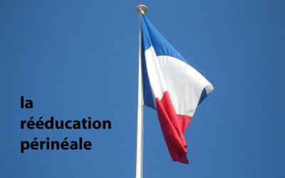 France-postpartum-pelvic-floor-training